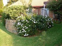 House in to rent in Faerie Glen, Pretoria