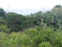 Vacant Land in for sale in Pennington, Scottburgh