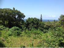 Vacant Land in for sale in Hibberdene, Hibberdene