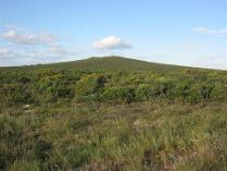 Yzerfontein Houses For Sale