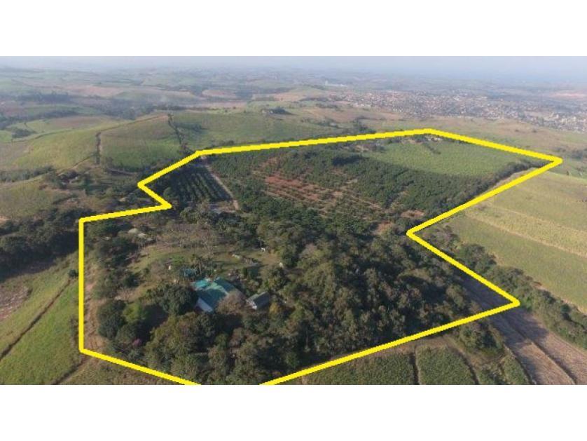 Farm-standar_458580692-Shakaskraal, KwaDukuza