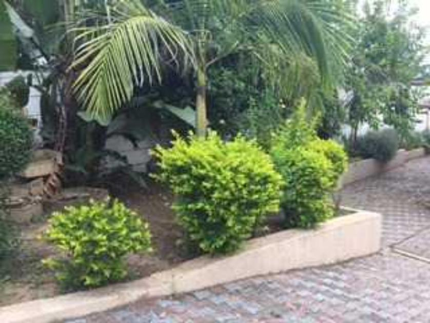 House-standar_http://multimedia.persquare.co.za/s838x629_1777367790-Mthatha, King Sabata Dalindyebo