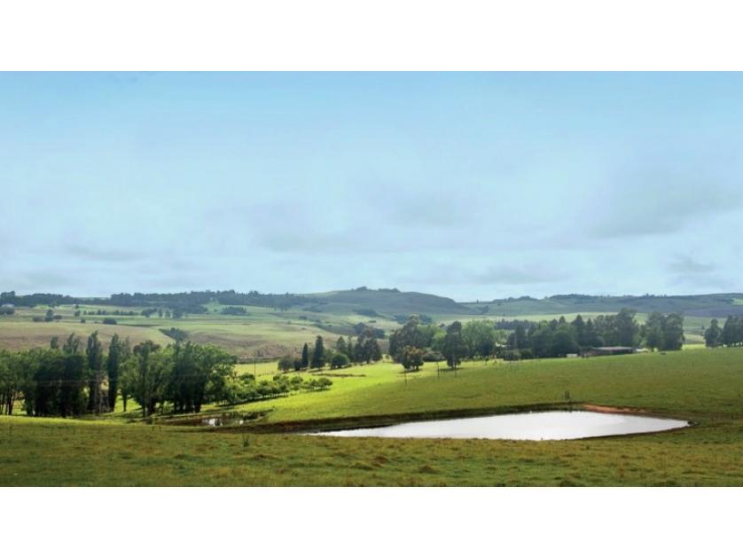 Farm-standar_http://multimedia.persquare.co.za/s838x629_832116559-Mooi Rivier SP, Mooi Rivier